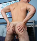 behåret røv homo